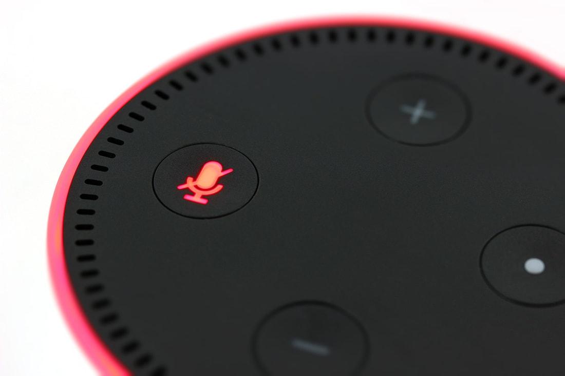 echo dot smart home installation
